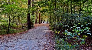 The 7 Most Beautiful Bike Trails You Can Take In Pittsburgh