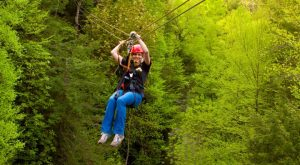 The Epic Zipline In West Virginia That Will Take You On An Adventure Of A Lifetime