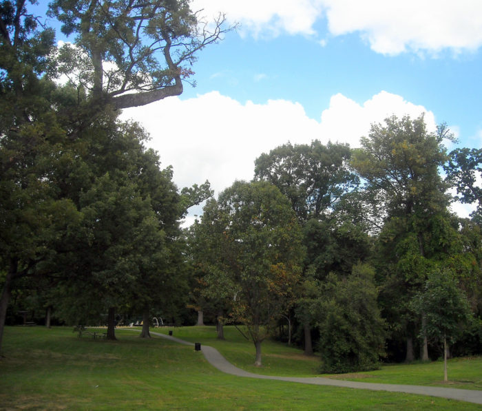 10 Best Places To Have A Picnic In Washington DC