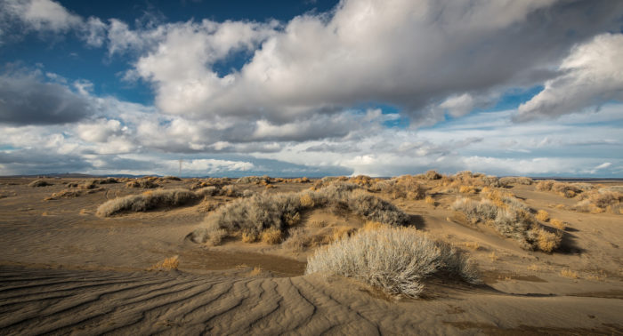 this beautiful desert lakebed in oregon is out of this world