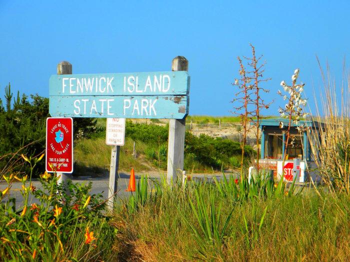 Fenwick Island State Park Kayaking