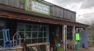 11 Incredible Thrift Stores In Mississippi Where You'll Find All Kinds Of Treasures