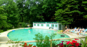 The Incredible Spring-Fed Pool In West Virginia You Absolutely Need To Visit