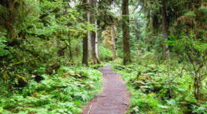 National Geographic Just Named This Washington Trail One Of The Best In The World