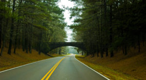 A Drive Down Tennessee's Loneliest Road Will Take You Miles And Miles Away From It All