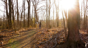 The Hiking Trail Hiding In Nashville That Will Transport You To Another World