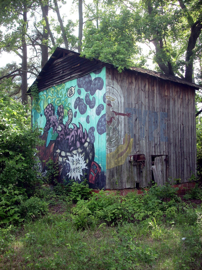 Where To Find The Cameron Barnstormer Murals In North Carolina