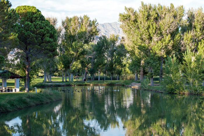 12 natural wonders hiding in plain sight in nevada no for Floyd lamb park fishing