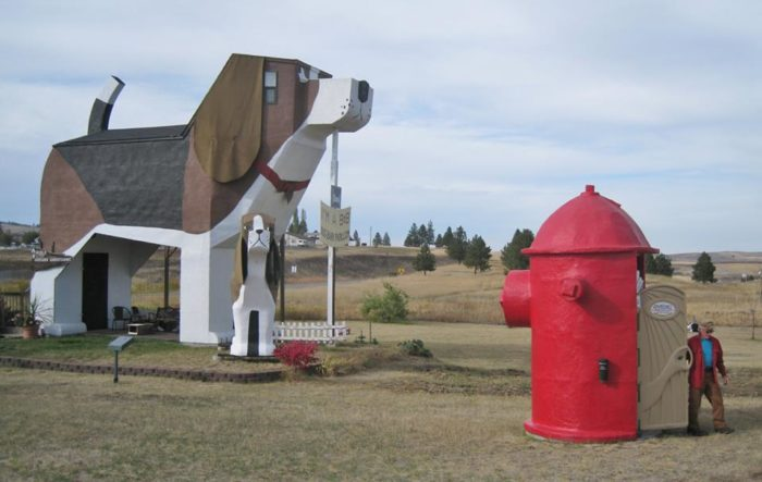 The Dog Bark Park Inn Is The Most Unique Bed And Breakfast