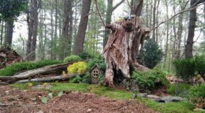 Most People Have No Idea There's A Fairy Garden Hiding In Massachusetts And It's Magical