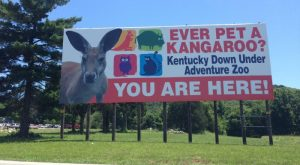 Not Many Know About This Exotic Animal Sanctuary Right Here in Kentucky