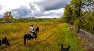 13 Unforgettable Horse-Back Riding Adventures You Can Only Have In Kentucky