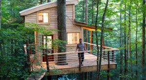 Sleep Underneath The Forest Canopy At This Epic Treehouse In Kentucky