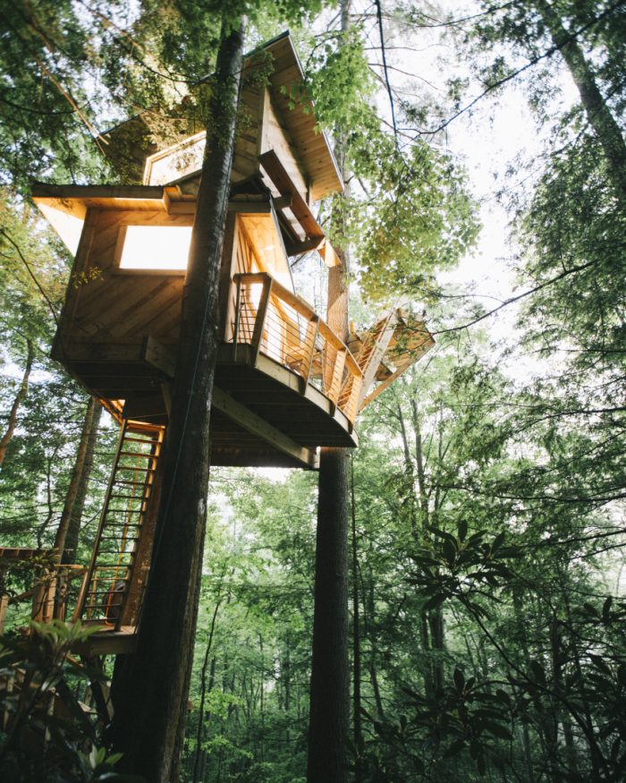 The Most Epic Treehouse In Kentucky