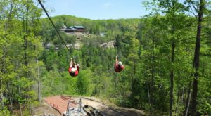 The Epic Zipline In Kentucky That Will Take You On An Adventure Of A Lifetime