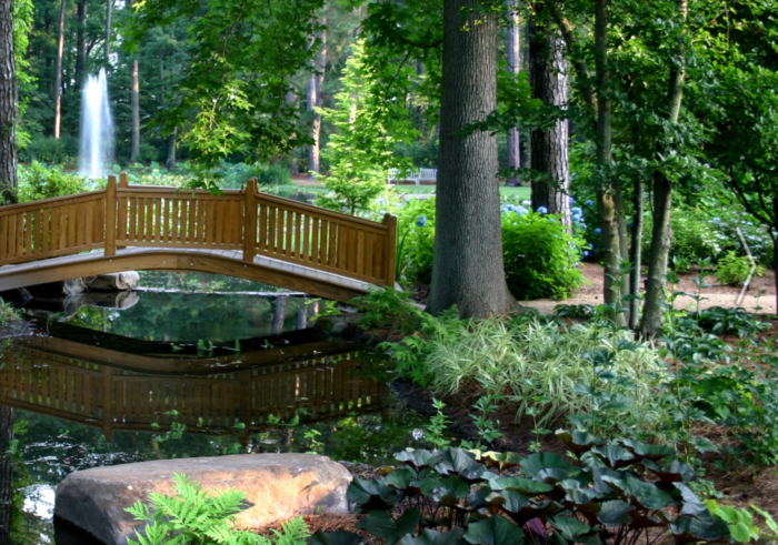 Virginia's Enchanted Forest Walk Is Picture Perfect For Spring