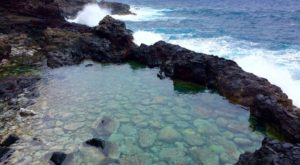 The Incredible Tide Pools In Hawaii You Absolutely Need To Visit