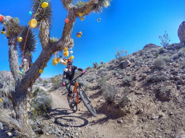 The 12 Most Beautiful Bike Trails In Nevada You Ll Want To Explore