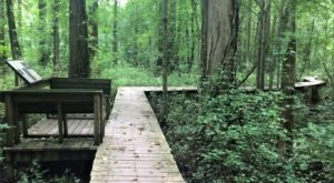 13 Hidden Places In Maryland Only Locals Know About