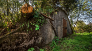 Not Many People Know About The Secret, Abandoned WWII Bunker Hiding In Oregon