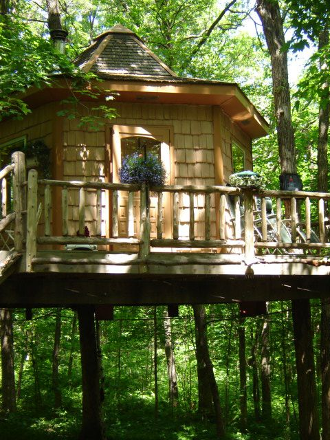 Sleep Beneath The Forest Canopy At This Treehouse Hotel In