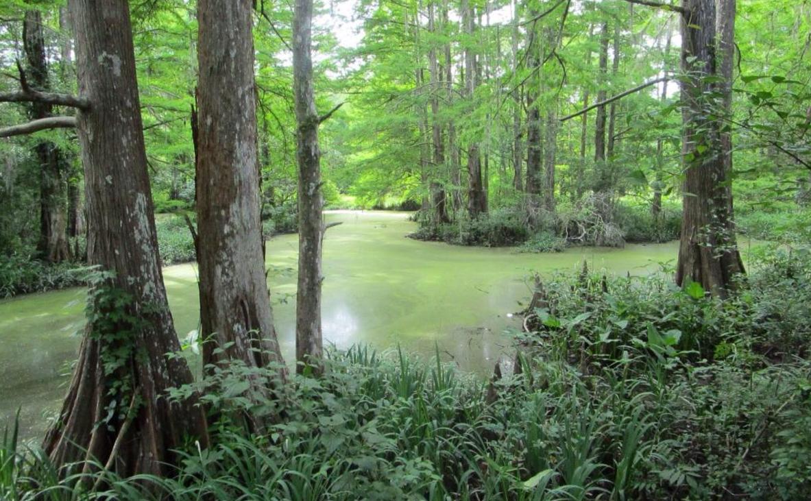 Arkansas City Nature Center