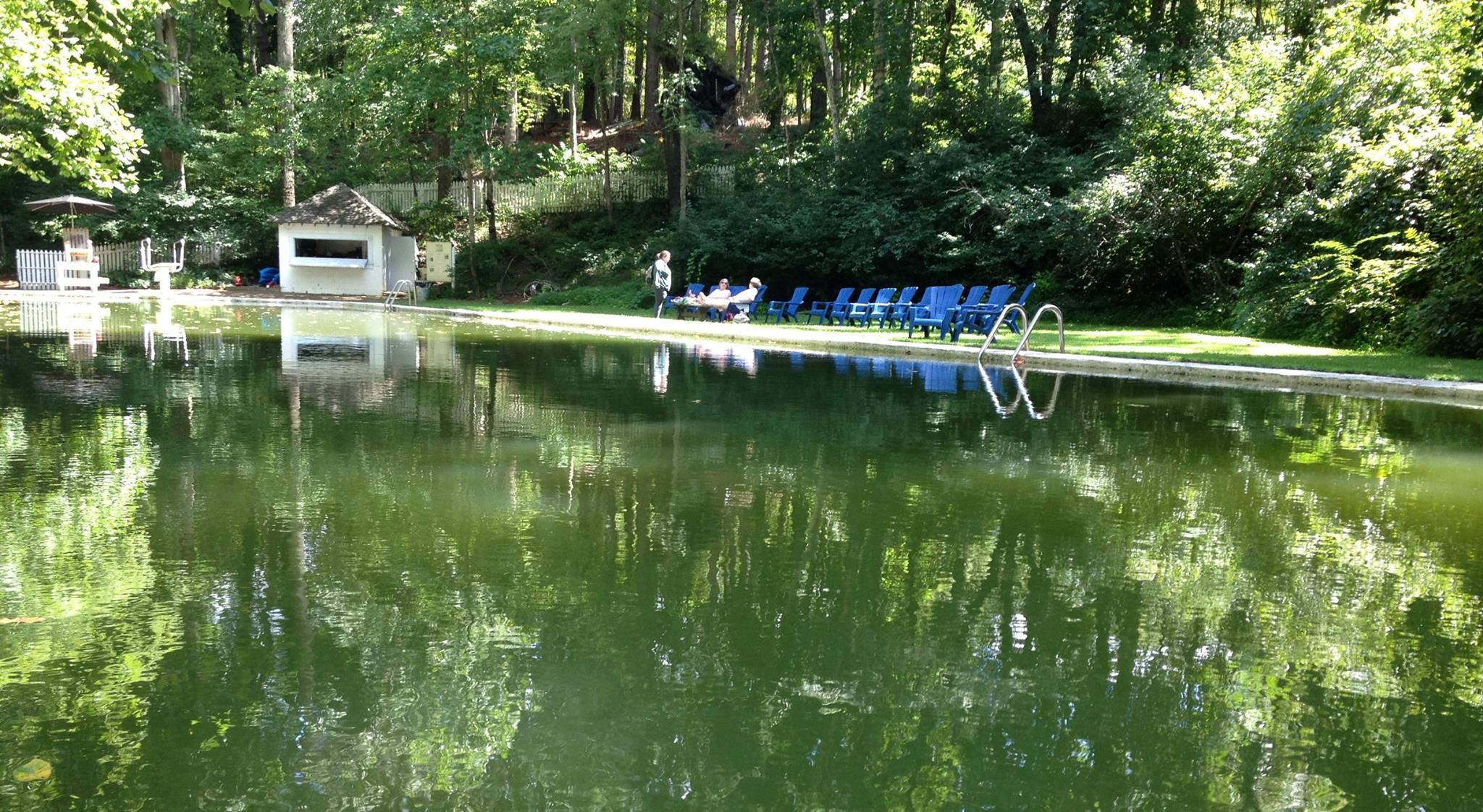 The Blue Ridge Swim Club Features An Incredible Spring Fed