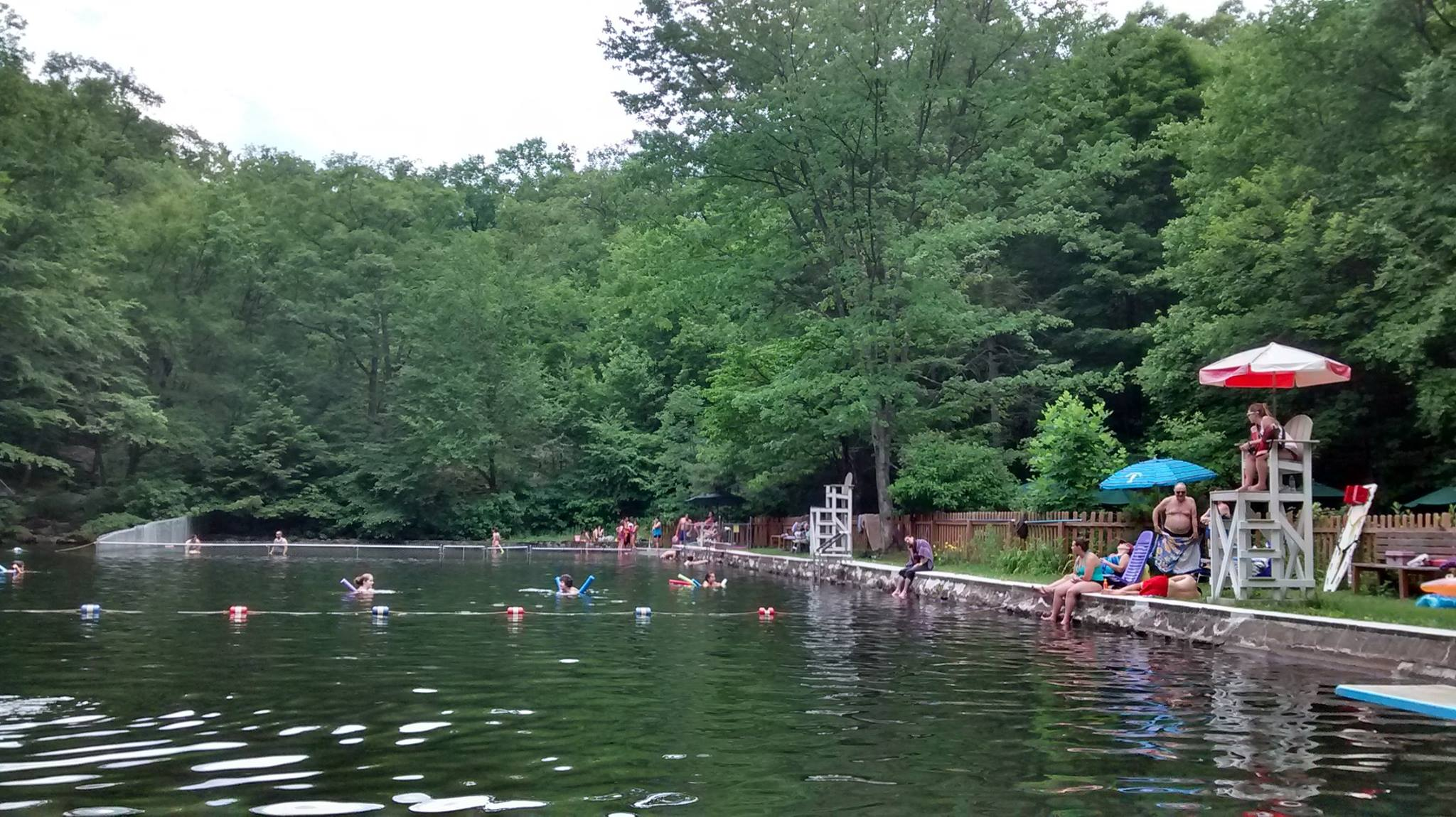 Image result for Highlands Natural Swimming Pool Norvin Green State Forest