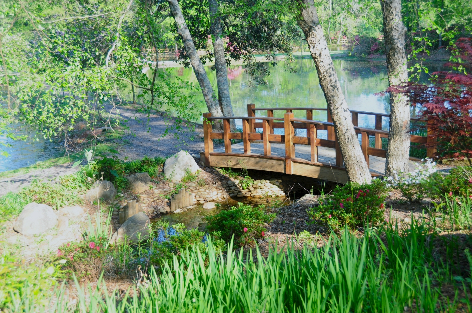 the mobile japanese garden in alabama is a little slice of zen