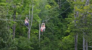 The Epic Zipline In New York That Will Take You On The Adventure Of A Lifetime