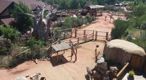 This Colorado Zoo Was Named Among The Best In The Nation And You'll Want To Visit