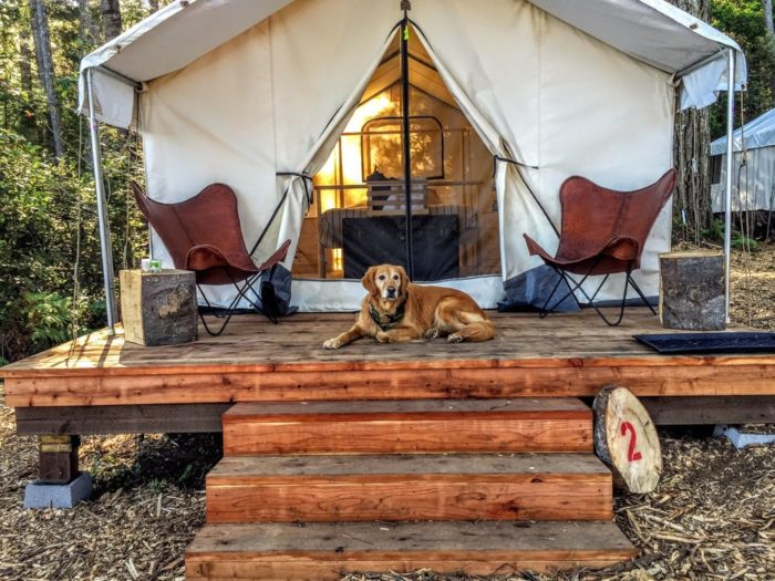 The fancy c&ground lets guests rent out their tent cabins which they call  safari tents.  These cozy abodes have fabric walls and are housed on wooden ... & The New Mendocino Campground is a Beautiful Secluded Glampground ...