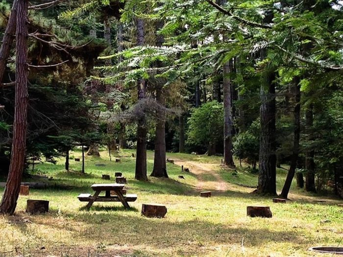 The New Mendocino Campground Is A Beautiful Secluded