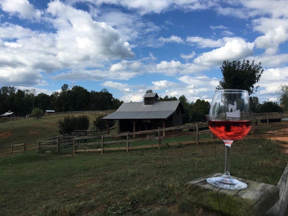 Divine Llama Vineyards Is One Of The Most Unusual Wineries