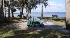 9 Picnic Perfect Florida Hikes That Will Make Your Spring Complete