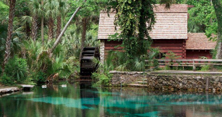 Juniper Springs Is The Best Spring Fed Pool In Florida