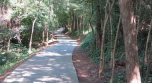 8 Easy And Beautiful Bike Trails In South Carolina Everyone Will Love