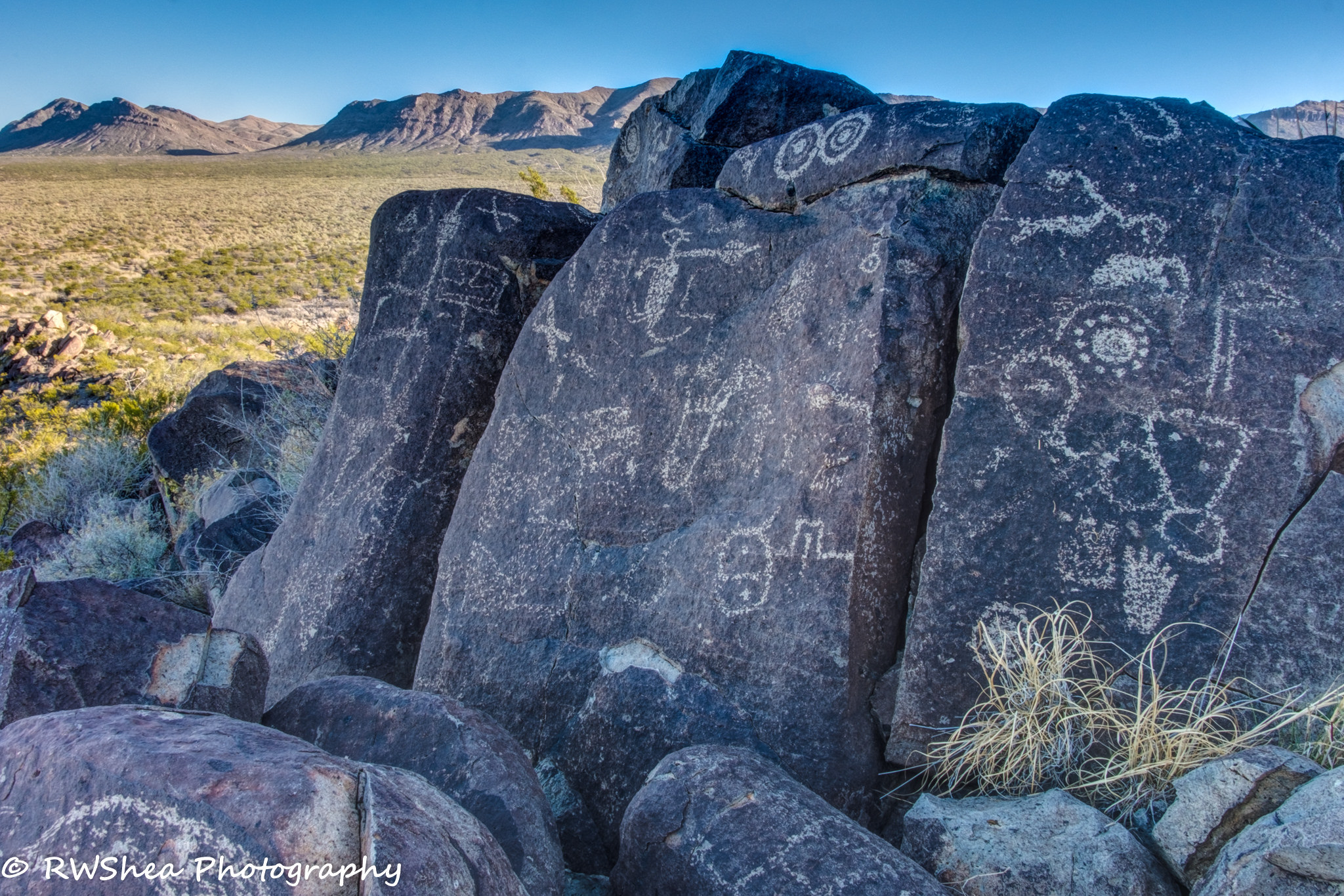 Fort Worth Focus >> 9 Trails In New Mexico That Will Lead You Straight To Ancient Petroglyphs