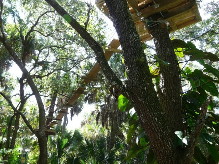 The Canopy Walk is basically the beginnersu0027 course. It includes five challenging sections and two zip lines giving visitors some incredible views. & The Epic Canopy Course In Florida That Will Bring Out The ...