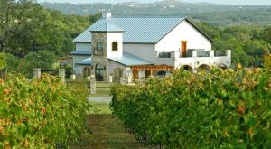 The Remote Winery In Texas That's Picture Perfect For A Day Trip