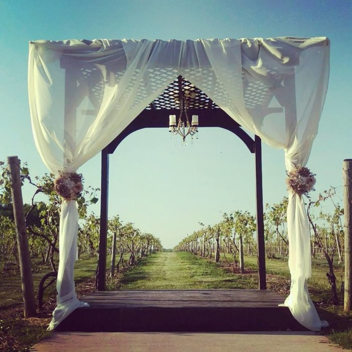 Becker Farms Wedding: Vizcarra Vineyards Is Best Winery Near Buffalo For A Day Trip