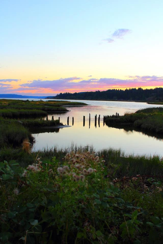 These 10 Charming Waterfront Towns In Washington Are ... Beautiful Island Images