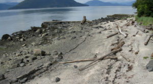 What's Hiding At This Alaska Beach Is Unexpected But Completely Fascinating