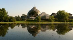 You'll Love This One Awesome Activity In Detroit And It Won't Cost You A Cent