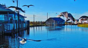 The Spectacular Seafood Restaurant In New Jersey Hiding In The Middle Of A Wildlife Refuge