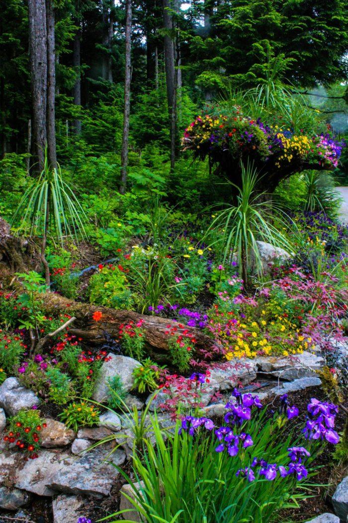 The Secret Garden In Alaska You Re Guaranteed To Love
