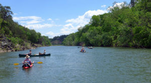 There's Nothing Better Than Arkansas's Natural Lazy River On A Summer's Day