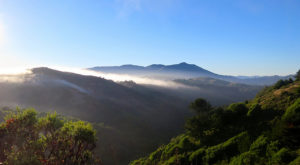 The Small Town Near San Francisco You've Never Heard Of But Will Fall In Love With