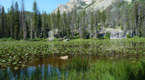 11 Hidden Places In Idaho Only Locals Know About