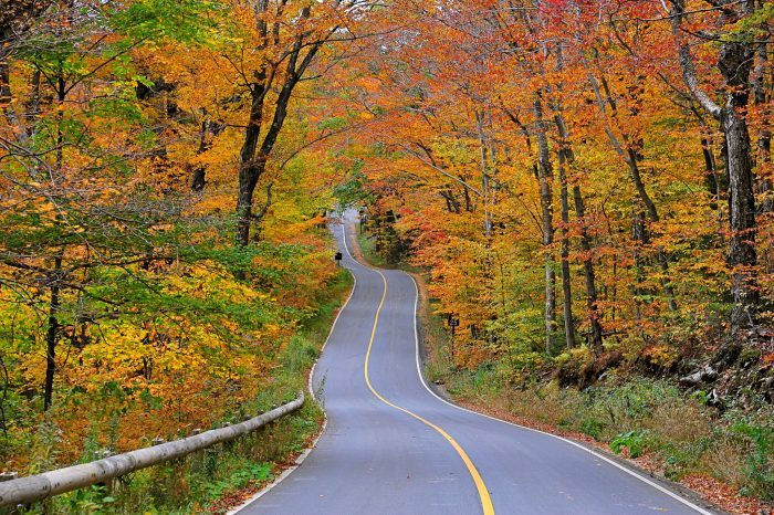 Take These 7 Country Roads In Massachusetts For A Gorgeous